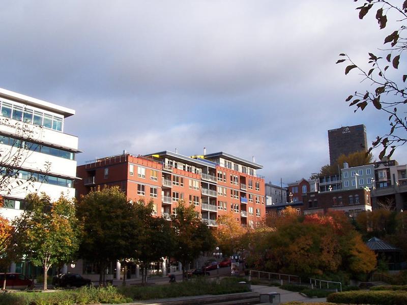 Sc ne urbaine l automne au jardin de saint roch et la for Au saint roch hotel jardin