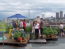 Visite sur le toit. Photo: Jean Cazes, 10 août 2006.