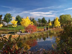 Grand format 800X600. Photo 7: domaine Maizerets (section Arboretum). Photo: Jean Cazes, 9 octobre 2006.