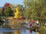 Grand format 800X600. Photo 5: Domaine Maizerets (section Arboretum).