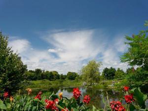Arboretum du domaine Maizerets. Vue en direction NE. Jean Cazes, 17 juillet 2008.